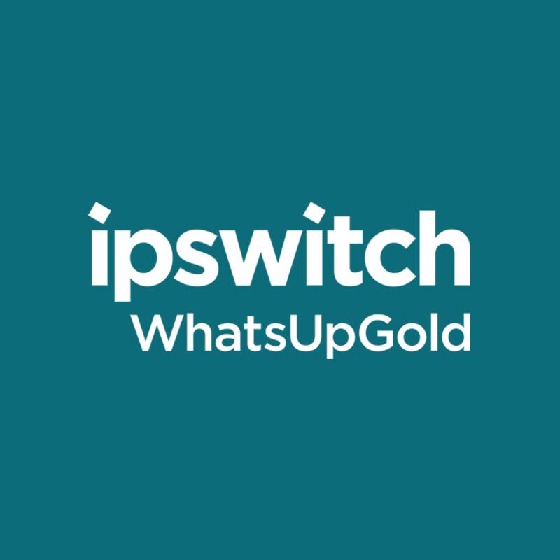 Whatsup Gold – monitorowanie zasobów